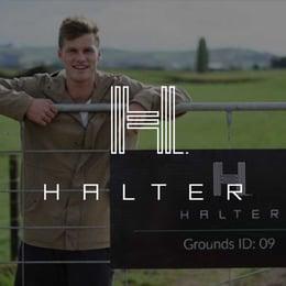 Halter-1