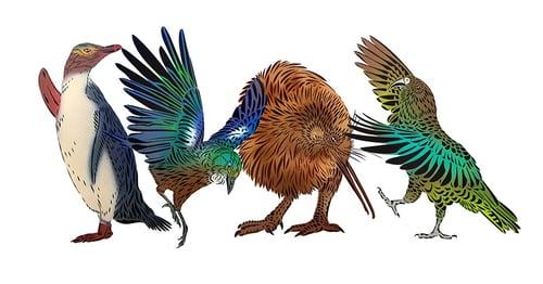 persona-birds-1000-blog